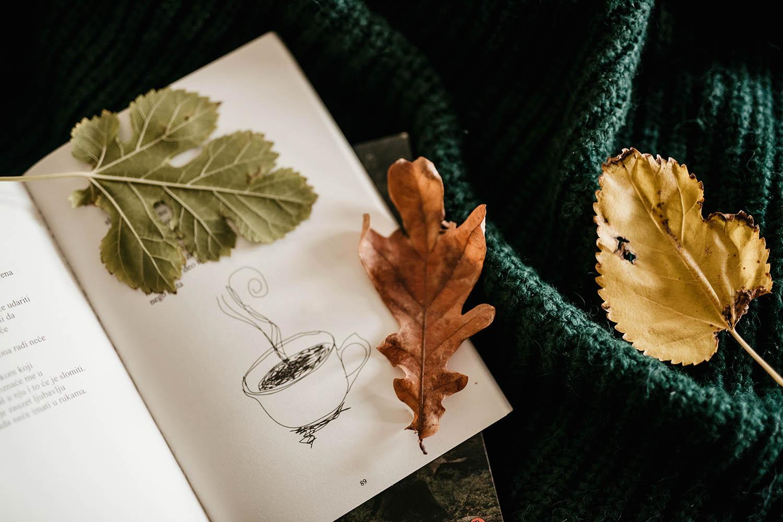 Sasvim lično: Zimski herbarijum
